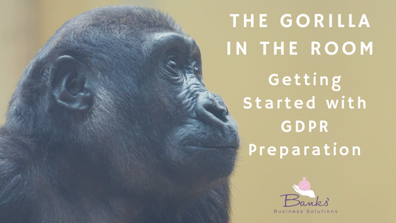 Picture of a gorilla with text on the right hand side that says The Gorilla in the Room – Getting Started with GDPR Preparation