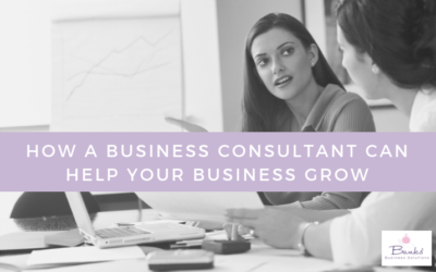 4 Reasons You Should Hire A Business Consultant For Your Small Business