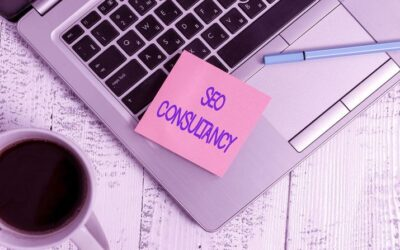 3 Things To Check Before Hiring an SEO Consultant